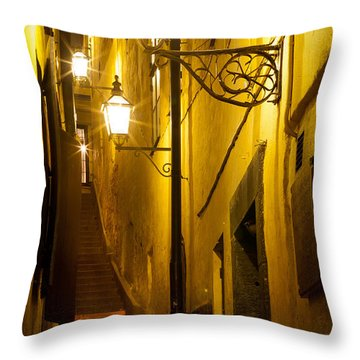 Marten Trotzigs Grand Throw Pillow by Inge Johnsson