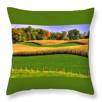 Maryland Country Roads - Swales Throw Pillow