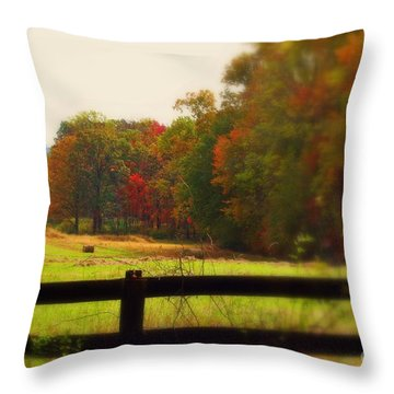 Maryland Countryside Throw Pillow