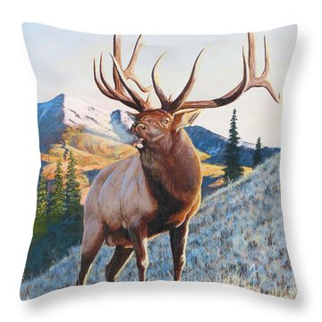 Mary's River Morning Throw Pillow