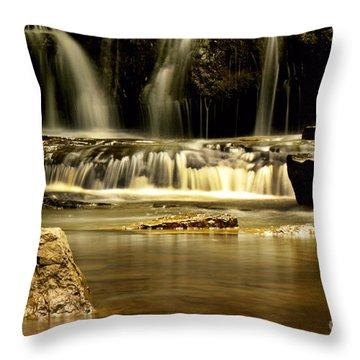 Mash Fork Falls Throw Pillow by Melissa Petrey