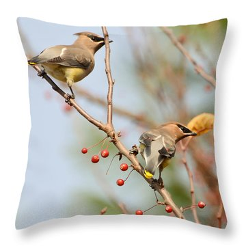 Throw Pillow featuring the photograph Masked Duo by Kerri Farley