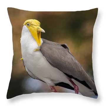 Masked Lapwing Throw Pillow by Carolyn Marshall
