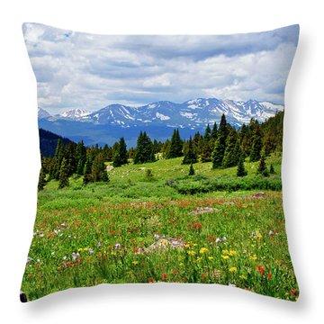 Massive Backdrop Throw Pillow by Jeremy Rhoades