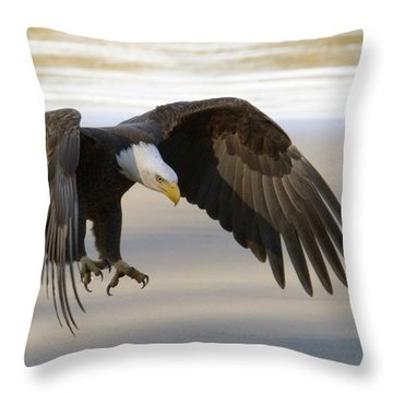 Master Of The Sky Throw Pillow