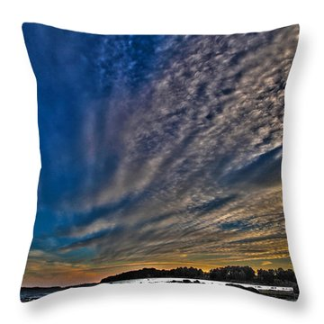 Masterpiece By Nature Throw Pillow by Randi Grace Nilsberg