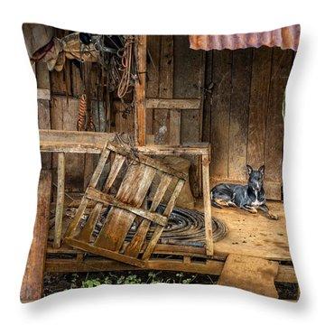 Master's Home Throw Pillow