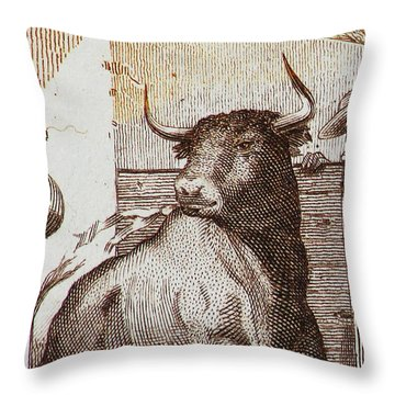 Matador 1 Throw Pillow