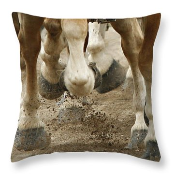 Match 'em Up Throw Pillow by Carol Lynn Coronios