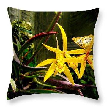Throw Pillow featuring the photograph Matching Dresses Of Good Friends by Zafer Gurel
