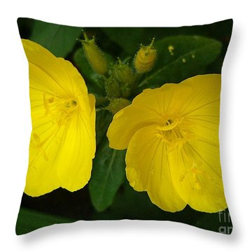 Throw Pillow featuring the photograph Matching Pair by Sara  Raber