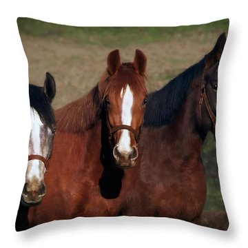 Mates Throw Pillow