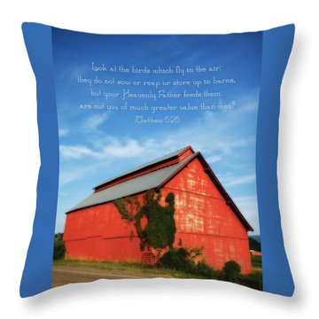 Matthew 6 26 Scripture Red Barn Throw Pillow by Denise Beverly