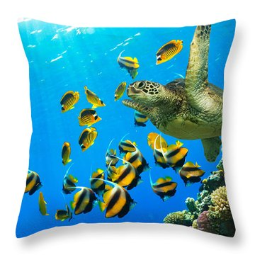 Maui Cruzer Throw Pillow by James Roemmling
