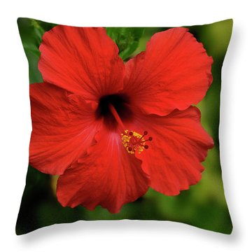 Maui Hibiscus Throw Pillow