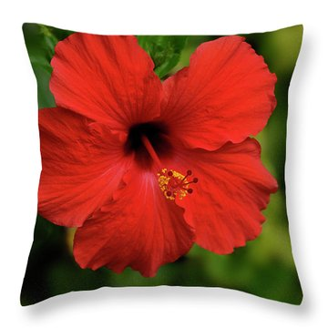 Maui Hibiscus Throw Pillow by Arthur Fix