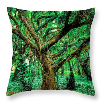 Maui Tree Throw Pillow