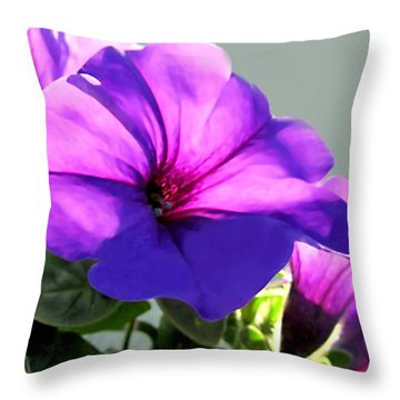 Mauve Petunia Trio Throw Pillow by Danielle  Parent