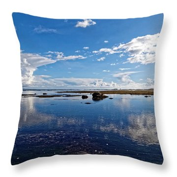 Mavericks Beach Throw Pillow