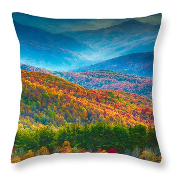 Max Patch Bald Fall Colors Throw Pillow