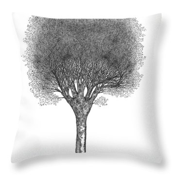 May '12 Throw Pillow