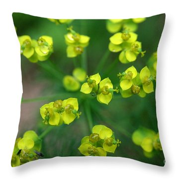 May Explosion Throw Pillow by Neal Eslinger
