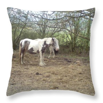 Throw Pillow featuring the photograph May Hill Ponies 1 by John Williams