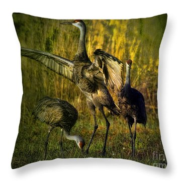 May I Have This Dance Throw Pillow by Lianne Schneider