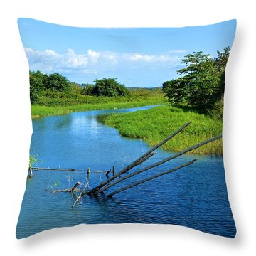 Mayaguez 4824 Throw Pillow
