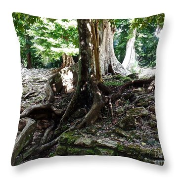 Mayan Architecture Covered By Centuries Of Tree Roots Throw Pillow