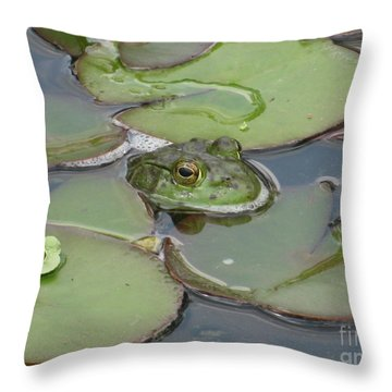 Throw Pillow featuring the photograph Maybe I'll Just Blend In... by Margaret Newcomb