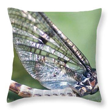 Mayfly Throw Pillow by Richard Thomas