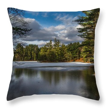 Mbs Pond Throw Pillow