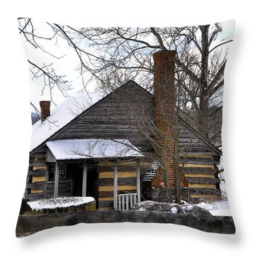 Mccormick Farm 5 Throw Pillow by Todd Hostetter