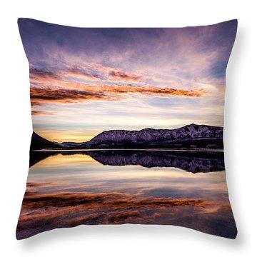Mcdonald Palette Throw Pillow by Aaron Aldrich