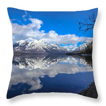 Mcdonald Reflecting Throw Pillow by Aaron Aldrich