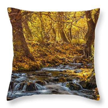 Mcgee Creek Throw Pillow