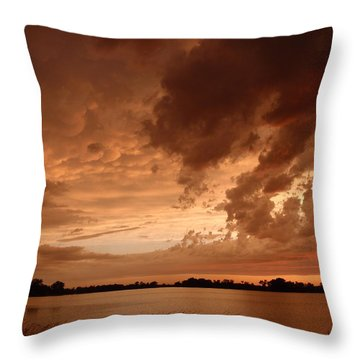 Mciver Lake Throw Pillow by James Peterson