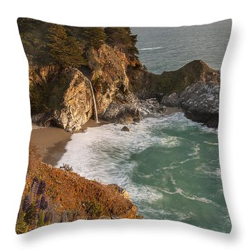 Mcway Falls 5 Throw Pillow