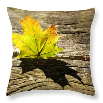 Me And My Shadow 2 Throw Pillow by Mary Bedy