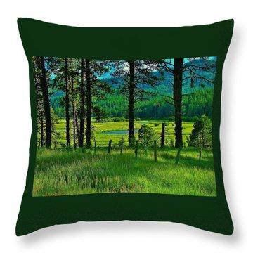 Meadow 8 Throw Pillow
