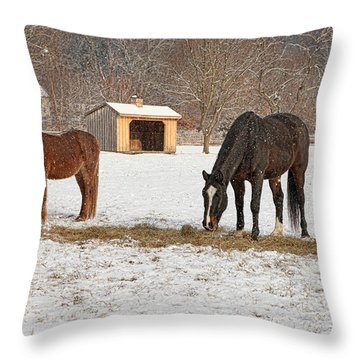 Meadow Breeze Farm Winter 2014 Throw Pillow