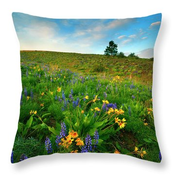Meadow Gold Throw Pillow by Mike  Dawson
