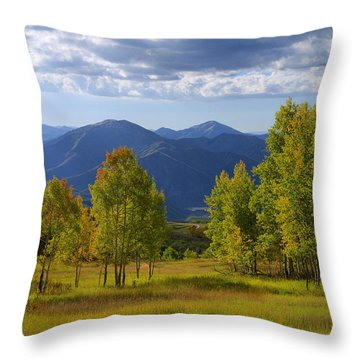 Meadow Highlights Throw Pillow