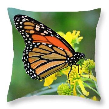 Meadow Monarch Throw Pillow