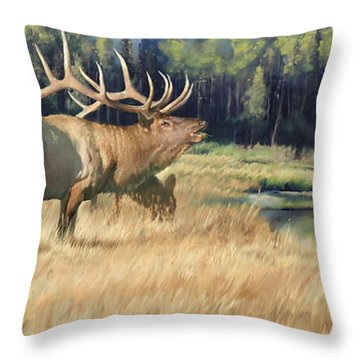 Meadow Music Throw Pillow by Rob Corsetti