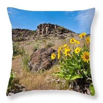 Throw Pillow featuring the photograph Meadow Of Arrowleaf Balsamroot by Jeff Goulden