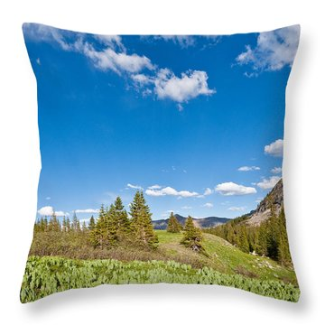 Throw Pillow featuring the photograph Meadow Of False Hellebore by Jeff Goulden