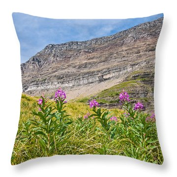 Meadow Of Fireweed Below The Continental Divide Throw Pillow