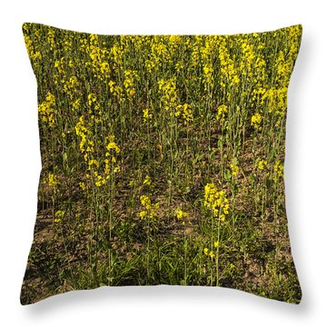 Meadow Of Rapes Throw Pillow by Svetlana Sewell